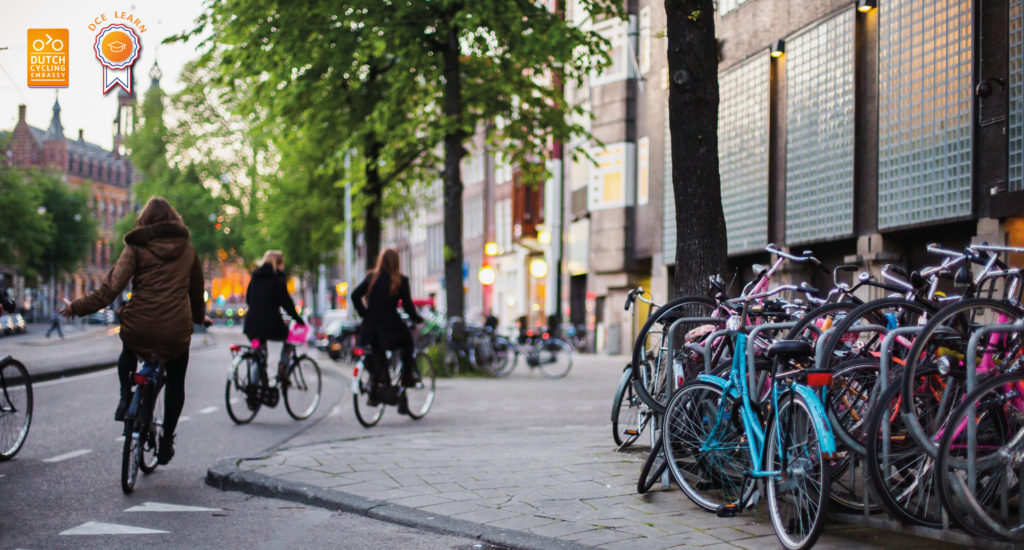 Free webinar 28th of May: What Are The Basic Design Principles For Bicycle Infrastructure?