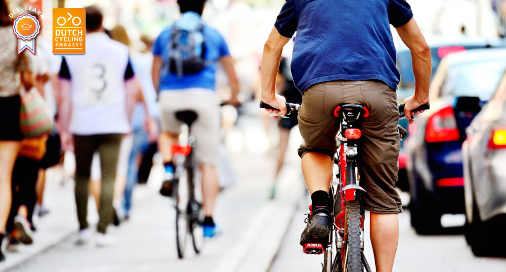 Webinar: How safe is your bicycle infrastructure?